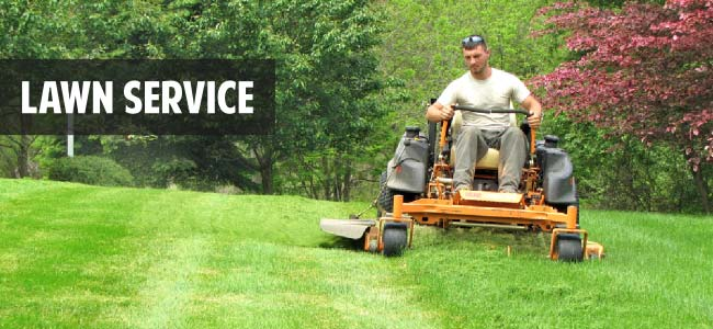 Benefits Of A Professional Landscaping Service