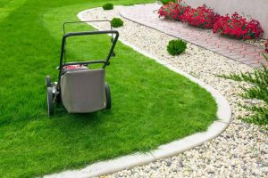 grass cutting services